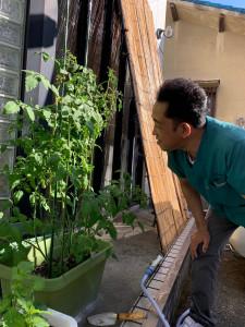 2020.07.02 院長見つめるお野菜